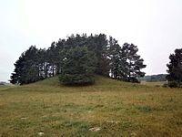 Svobiskelio piliakalnis is pietu.jpg