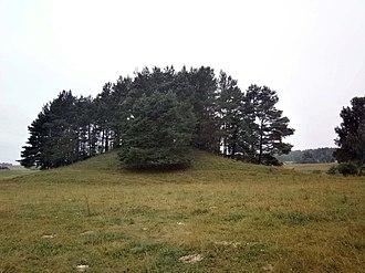 Molėtai District Municipality - Svobiškėlis mound