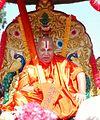 Swami Rambhadracharya during Grand Rathyatra.jpg
