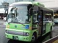TOKUSIMA-KAWAUTI BUS.JPG