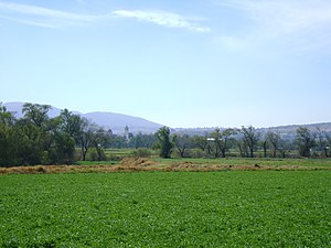 Tequixquiac - Tequixquiac, a Mexican municipality does not allow residential units on agricultural land.
