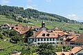 Terrasses de Lavaux - panoramio (50).jpg