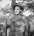 The British Army in North-west Europe 1944-45 B11927.jpg