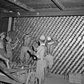 The British Reoccupation of Malaya SE6740.jpg