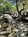 The Secret Beauty of Nature in Srilanka 8B66B8D6-E41A-4DAC-A52B-AA464B221E18.jpg
