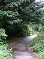 The Westfield Woods - geograph.org.uk - 1508182.jpg