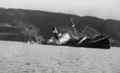 The steamer Canelos sank in Valdivia River - photo from autumn 1960.png