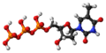 Thymidine triphosphate 3D ball.png