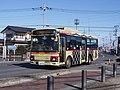Tobu Bus West 9986 Koedo Meisho Meguri Bus (Gold) Rainbow 2.jpg