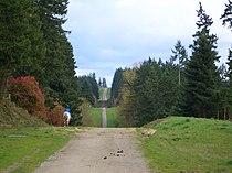 Tolt-Pipeline-Trail-rider-3509.jpg