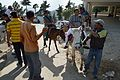 Tourists on Horse - Naldehra 2014-05-08 1947.JPG