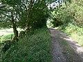 Track near Cliffe Hill Quarry - geograph.org.uk - 513972.jpg