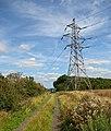 Track near Santon Wood - geograph.org.uk - 1433478.jpg