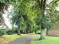 Tree-lined footpath, Higher Bebington Road - DSC09274.JPG