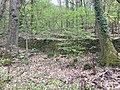 Trockensteinmauer im Wald.jpg