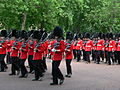 Trooping the Colour 2006 - P1110219 (169170416).jpg