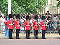Trooping the Colour 2006 - P1110254 (169172411).jpg
