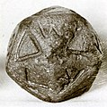 Twenty-sided die (icosahedron) with faces inscribed with Greek letters MET 10-130-1159.jpg