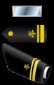 USA - PHS - O2 insignia.png