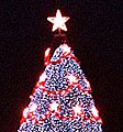 US National Christmas Tree 2001 A.jpg