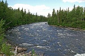 Umba River (Russia) - Image: Umba Podinza rapids