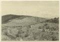 Utgrävningar i Teotihuacan (1932) - SMVK - 0307.e.0047.tif