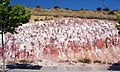 Utrillas facies sandstones ferruginization - La Lastrilla, Segovia, Spain.jpg