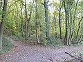 Valkenburg-Splitsing van paden in zuidelijke deel Ravensbosch.JPG