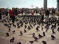 Venedig Markusplatz.JPG