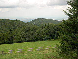 Hartmannswillerkopf mountain in France