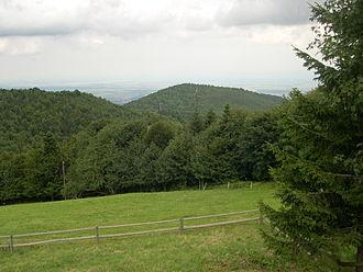 Hartmannswillerkopf - The Hartmannswillerkopf seen from the Molkenrain