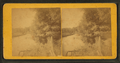 View of road running along a body of water, from Robert N. Dennis collection of stereoscopic views.png