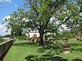 Villa la magia, giardino 14.JPG