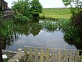 Village pond, Belthorn - geograph.org.uk - 823776.jpg