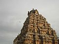 Vimana, Airavatesvara Temple, Dharasuram.jpg
