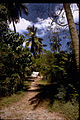 Virgin Islands National Park VIIS2319.jpg