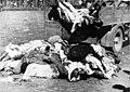 Vittime della strage di Addis Abeba compiuta tra il 19 e il 21 febbraio 1937.jpg