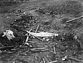 Vliegtuigongeluk Valkenburg, Bestanddeelnr 902-9359.jpg