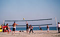 Volleyball (117657856).jpg