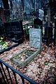 Vvedenskoe cemetery - Bag.jpg