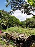 Waimea Valley Audubon Center - general view.JPG