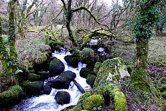 Walla Brook - Walla Brook near Babeny