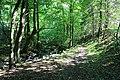 Wanderung Harz - Rund um Zorge - Sprakelbachtal - panoramio.jpg