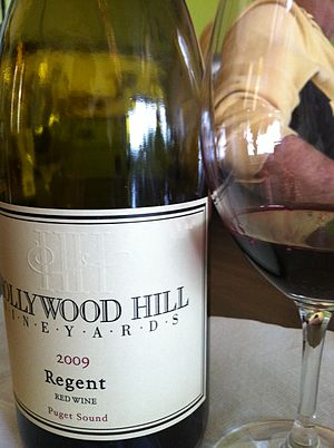 Regent (grape) - A Regent wine produced in the Puget Sound AVA of Washington State.