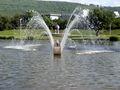 Wasserspiele im Horbach-Park Kranich.JPG