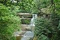 Waterfall near Ystradfellte - geograph.org.uk - 745058.jpg