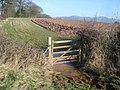 Wet gateway on the bridleway near Hill Farm - geograph.org.uk - 760047.jpg