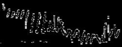 Willow Warbler sonogram.png