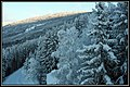Winter morning - Hafjell - panoramio.jpg