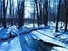 Winter stream marjaniemi.jpg